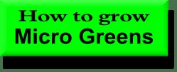 micro greens logo