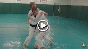 Intro to Brazilian Jiu Jitsu Part 2  The Basics I