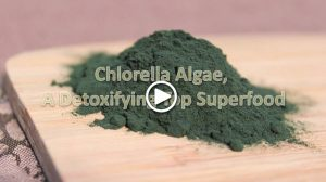 learn-about-chlorella-algae-and-how-it-may-help-detox-heavy-metals
